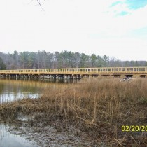 timber_bridge_15